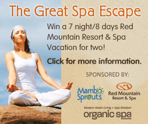 The Great Spa Escape