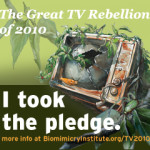 The Great TV Rebellion of 2010 -Turn Off The TV and Turn On Nature  – A Happy Hippy Mom