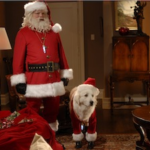 The Santa Cause from Santa Paws – Spreading A Little Magic For The Season!