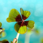St. Patrick's Day – 31 Quotes, Sayings, Toasts & Proverbs Of The Irish!