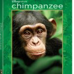 DisneyNature's CHIMPANZEE on Blu-ray Combo Pack Review & Giveaways!