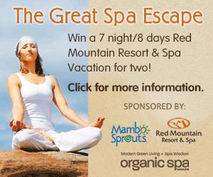 The Great Spa Escape
