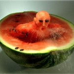 Wordless Wednesday- Playing With Your Food!