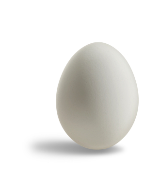 Egg Recall By Wright County