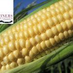 Corn Refiners Association – Facts VS Myths