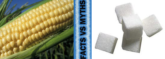 Humble Pie! High Fructose Corn Syrup UPDATE!