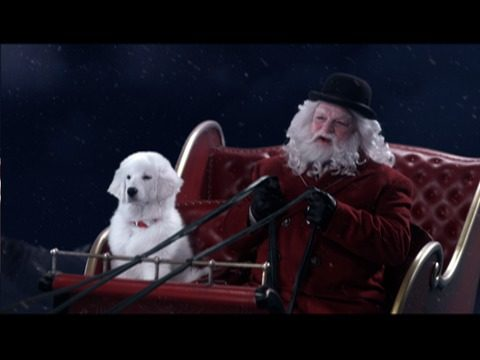 The Search for Santa Paws Special Sneak Peek!