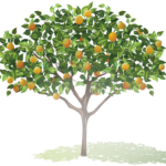Communities Take Root Planting Orchards! – Vote and Get $1 Off Edy's Fruit Bars!