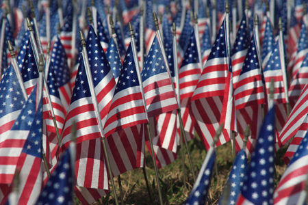 Thank You To The Veterans!