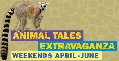 Animal Tales lemur