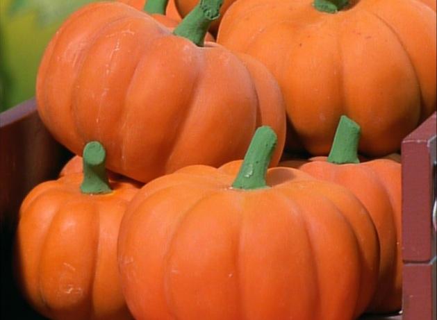 Trix's Pumpkin Pie