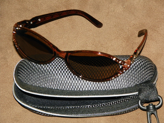 sunglasses & case