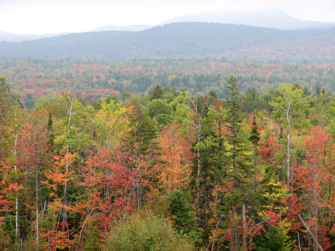 The Adirondacks – Autumn Mountain Biking Utopia!