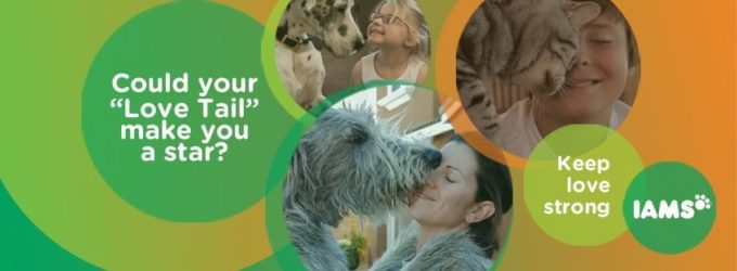 Iams Unconditional Love Tails Contest