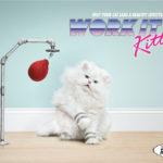 "Sponsored Video:  Alex Gaudino ft. Taboo ""I Don't Wanna Dance""  Work It Kitty"