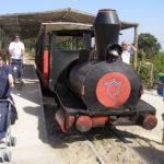 ren_de_Praia_do_Barril_(Ilha_de_Tavira)