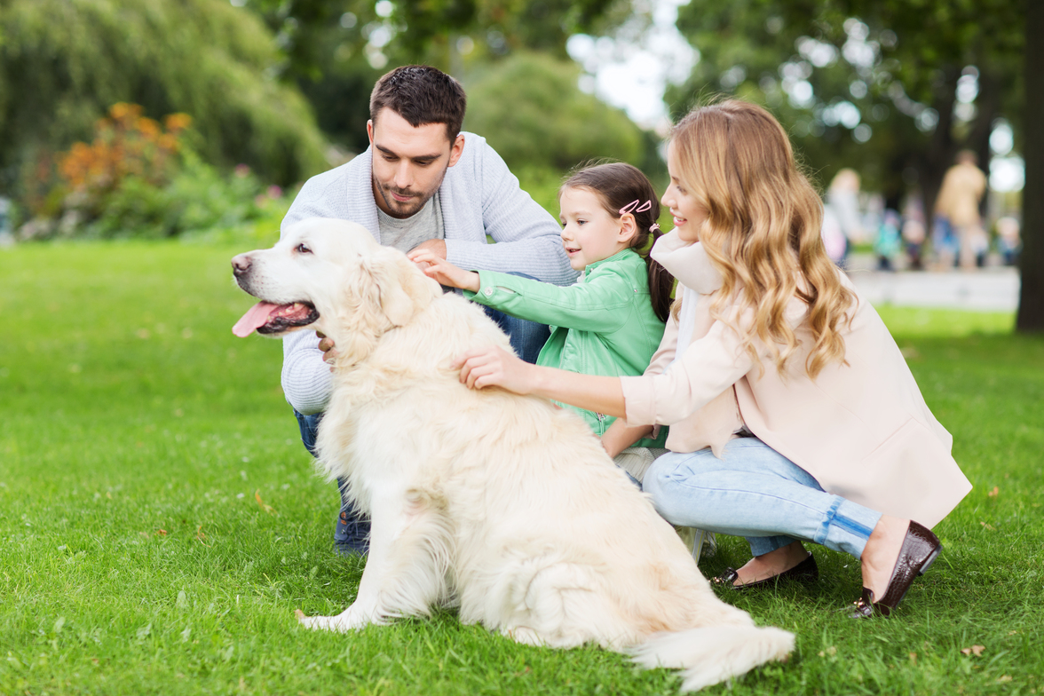 How To Be The Ultimate Dog Family | A Happy Hippy Mom